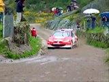 Peugeot 206 WRC Tests