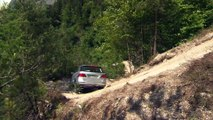 The new Mercedes-Benz GLE 400 4MATIC Offroad Demonstration