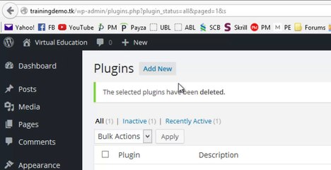 Difference between Paid and Free WordPress Plugins