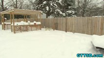 Husky in a SNOW STORM at Play *SNOW DOG SHORT 20*