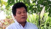 Cambio climático y pueblos indígenas de la Amazonía