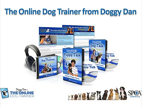 shock collars for dogs – How to Execute Dog Clicker Training