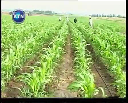 Irrigation farming