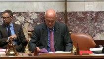 Seybah Dagoma - Intervention en séance publique sur l'indemnisation des victimes de la Shoah - 24 juin 2015