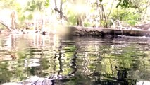 Cavern SCUBA Diving: Cenote Kukulkan, Playa Del Carmen