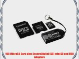Kingston Mobility Kit with 2 GB microSD Card Reader and 3 Adapters (MBLY/2GBKR)