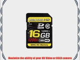 Digital Speed 16GB 1200X Professional High Speed Mach III 160MB/s Error Free (SDHC) HD Memory