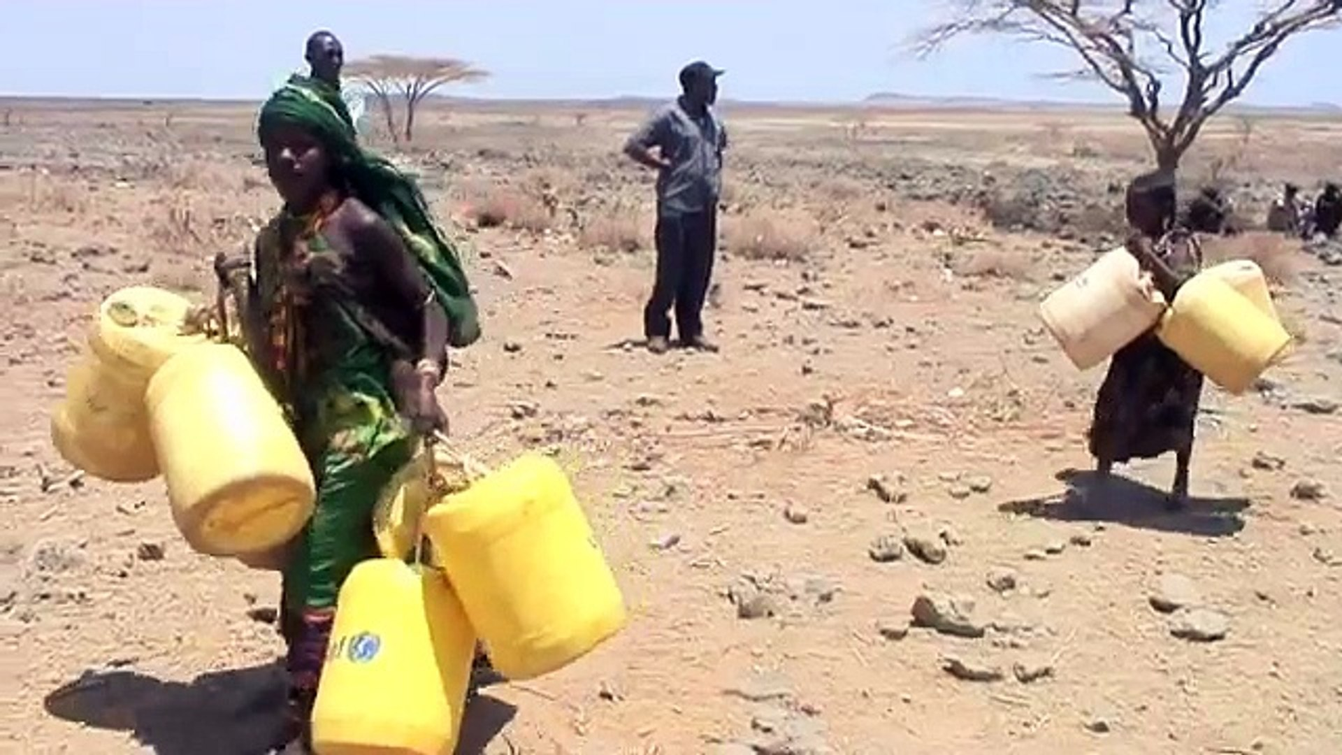 East Africa food crisis appeal: impact of drought on women