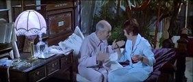 Jeden Hot a Druhý Čehý ( La Zizanie ) - Louis de Funes & Annie Girardot