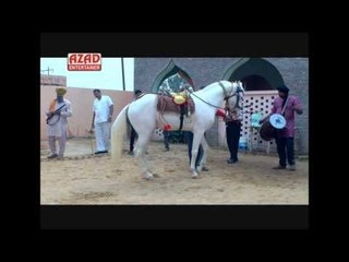 Horse Dance -  ARABIAN CHAL
