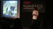 The sound of an image   Eamonn Nolan   TEDxYouth@AICS