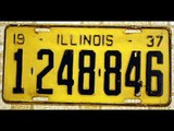 Illinois License Plate Collection 254 Plates