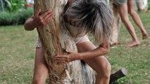 """1/ la danse des êtres des arbres"""" Je marche dans la beauté"""" promenade chorégraphique  http://compagnielucmaubon.free.fr"""
