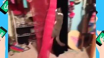 100+ CATS VINES   Cats Vine Compilation New April 2015   Best Vines, Funny, Cute, Kitty, Kitten ZI5A