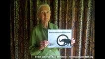Appel à l'Action : Journée mondiale de la vie sauvage !