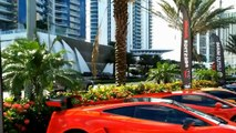 Lamborghini  Gallardo and Worlds First Gold Plated Lamborghini Aventador LP700-4 in MIAMI