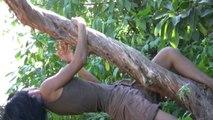 """4/ la danse de l'arbre torsadé Je marche dans la beauté"""" promenade chorégraphique  http://compagnielucmaubon.free.fr"""