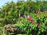 Costa Rica trip - 2006