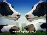 cow dance in nepali song - video dailymotion