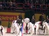 Dressage horse - Classical Riding - Spanish riding school