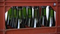 St Aignan sur Ry (76) : un producteur de cidre s'élève contre une taxe