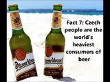 Funny Facts in Czech Republic: True or False Quiz about Czech Culture