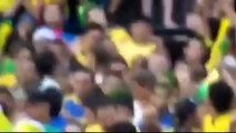 Croatian fan goes mad after the penalty that was awarded to Brazil in the middle of the Brazilian