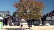 남산 한옥마을(Korean Traditional Houses).m2t