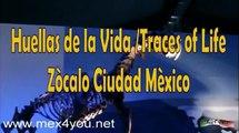 """""""Huellas de la Vida""""  Dinosaurios en el Zòcalo , Ciudad de Mèxico 2009"""
