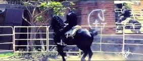 El Komander - Ranchero y Gallardo - Video no Oficial   HD