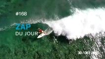 ZAP DU JOUR #168 : Trou en un en disc golf / 100 ans de beauté - Russie / Vivid Light Festival 3D Projection Mapping /