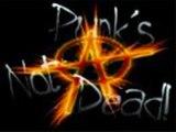 Punks, Skins - non servium