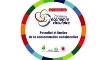 Atelier 2 : Potentiel et limites de la consommation collaborative