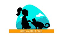 Las Cajas de Carton para Gatos | cathut  La Caja de Cartón para Tus Gatos