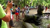 Wandering around the Monkey Forest in Ubud, Bali