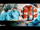 Como se liberan y trabajan las células madre de tu médula ósea