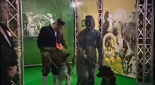 Crufts 2009 Freestyle Ceremony