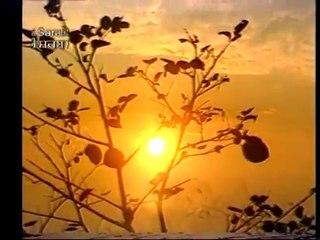 FULL PATH VIDEO SUKHMANI SAHIB JI BY BHAI RAJINDERPAL SINGH JI