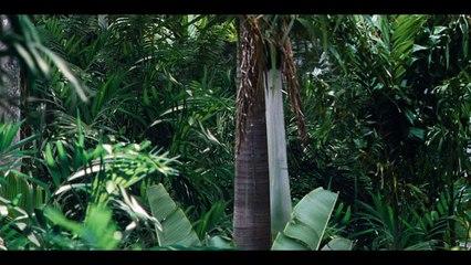 #4 M. Masrani découvre l'Indominus Rex - Extrait #4 M. Masrani découvre l'Indominus Rex (Français)
