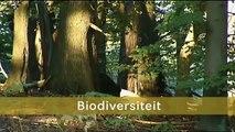 Nieuws Uit de Natuur - SchoolTV