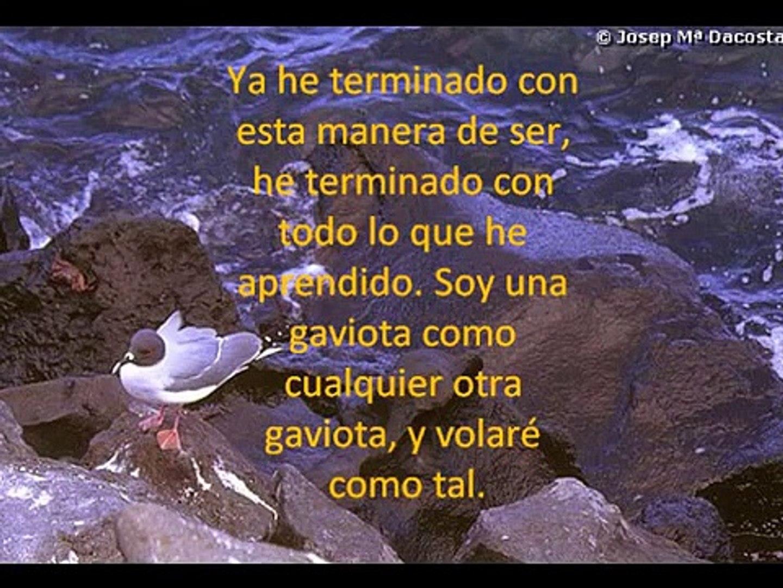Frases De Juan Salvador Gaviota
