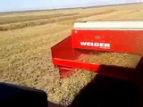 Baling small square bales of straw with Valmet 6600E and Welger baler