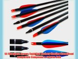 10 Fibreglass Arrows Field Tips Archery Hunting BroadHead compatible Compound