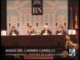 Los gitanos y lo gitano en la cultura española. 2/2