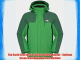 The North Face Men's Inlux Insulated Jacket - Sullivan Green/Nottingham Green Medium