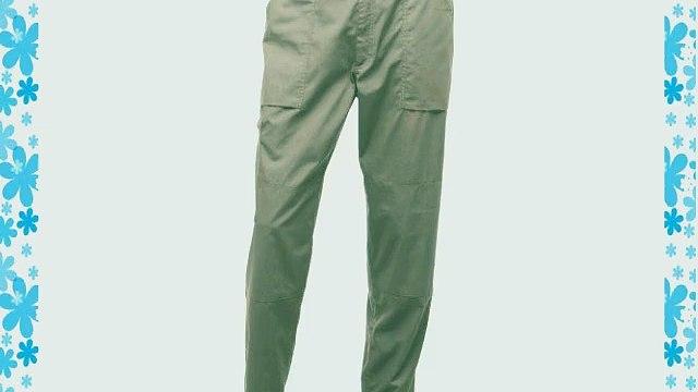 Regatta Mens New Action Trouser (Regular) / Pants (30W x Regular) (Lichen)