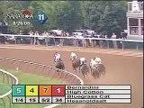 Bernardini - 2006 Travers Stakes