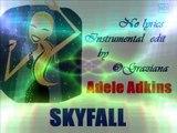 SKYFALL Adele Adkins version Instrumental ©GrazianaKaraoke