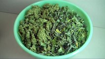 How To Make CANNA-OIL: Healthy MEDICAL MARIJUANA INFUSED COOKING OIL~Easy Recipe!