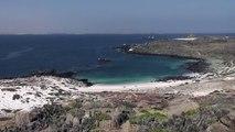 Vista desde Isla Damas / Damas Island View